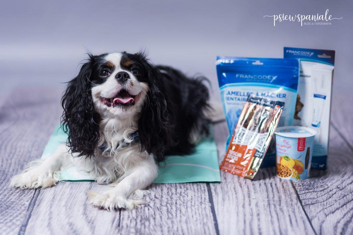 Recenzja psich smakołyków Happy Dog